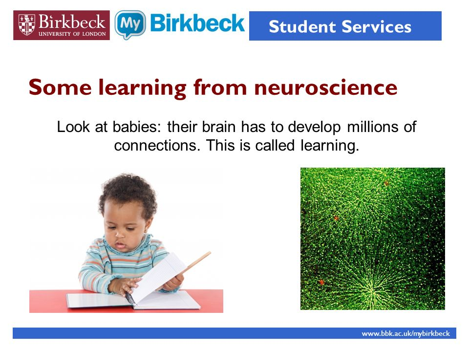 Some learning from neuroscience