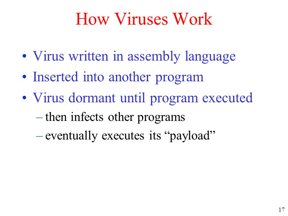 How Viruses Work Virus written in assembly language