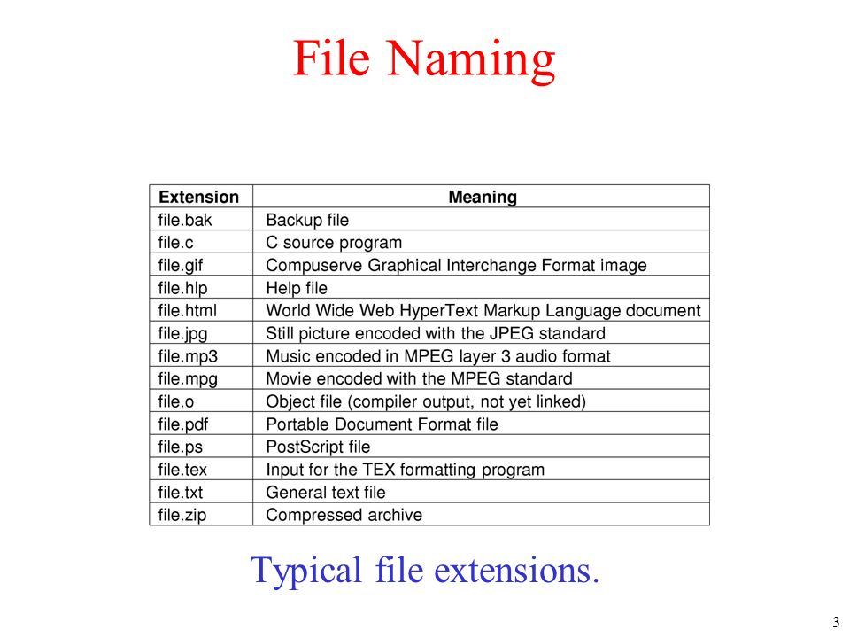 Typical file extensions.