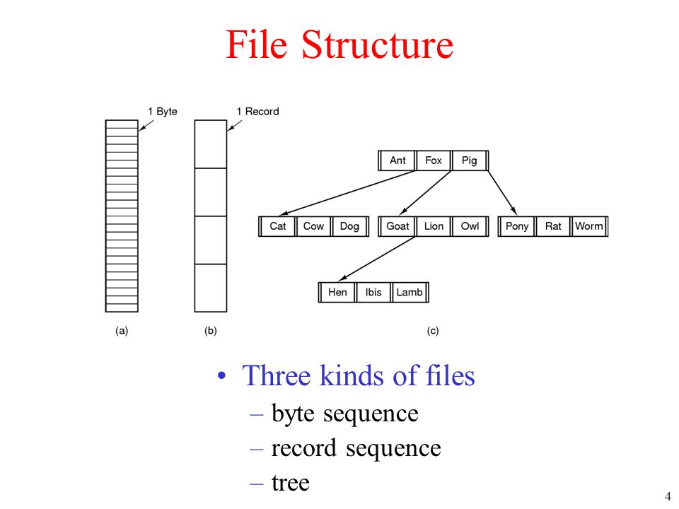 File Structure Three kinds of files byte sequence record sequence tree