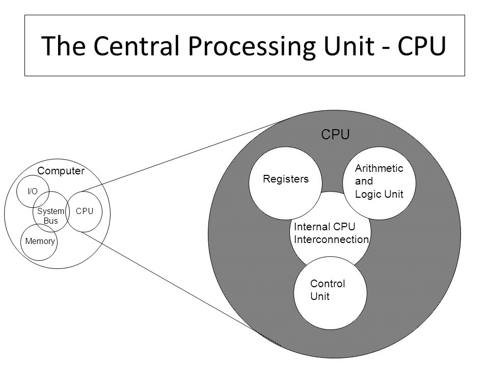 The Central Processing Unit - CPU