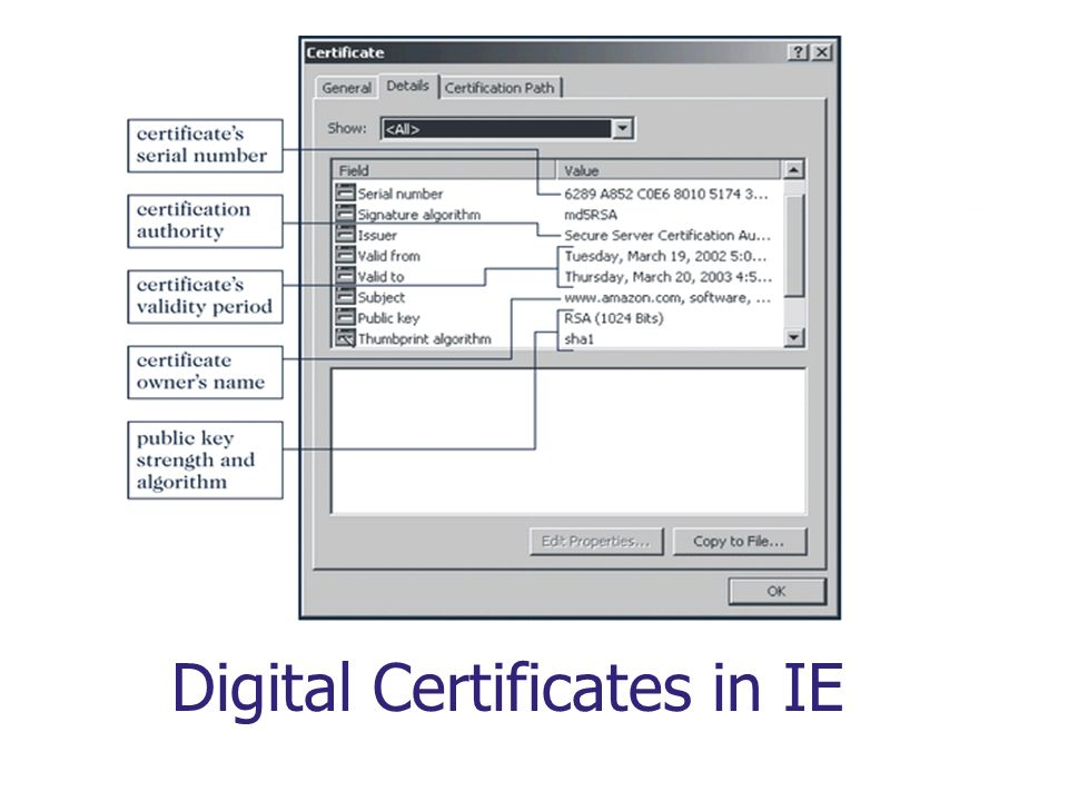 Digital Certificates in IE