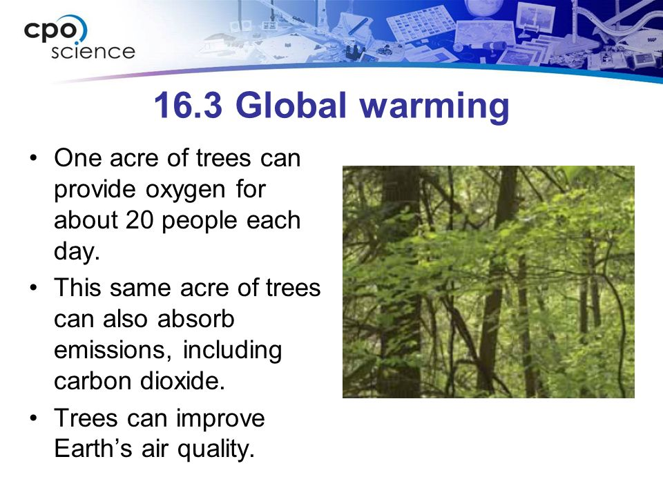 16.3 Global warming One acre of trees can provide oxygen for about 20 people each day.