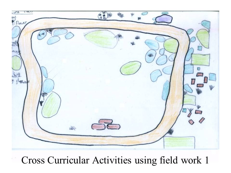 Cross Curricular Activities using field work 1