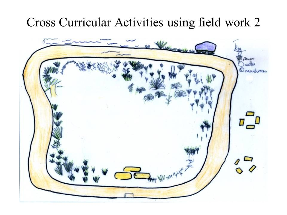Cross Curricular Activities using field work 2