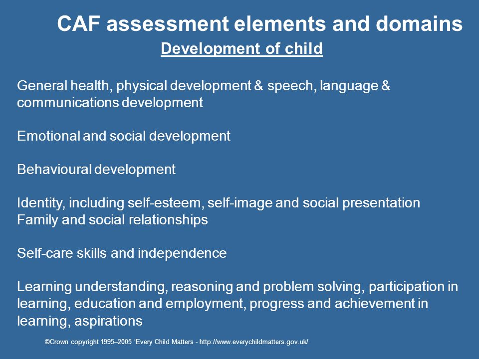 CAF assessment elements and domains