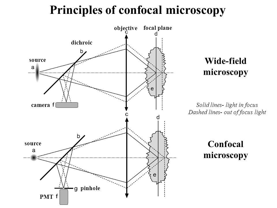 Wide-field microscopy