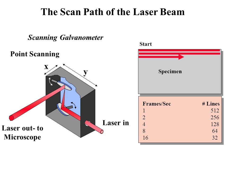 Scanning Galvanometer