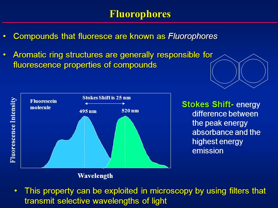 Fluorophores Compounds that fluoresce are known as Fluorophores
