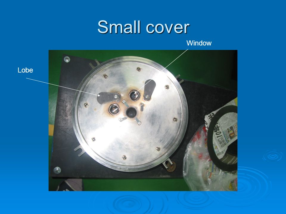 Small cover Window Lobe
