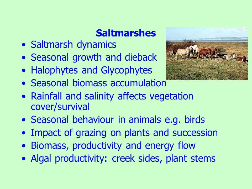 Saltmarshes Saltmarsh dynamics. Seasonal growth and dieback. Halophytes and Glycophytes. Seasonal biomass accumulation.