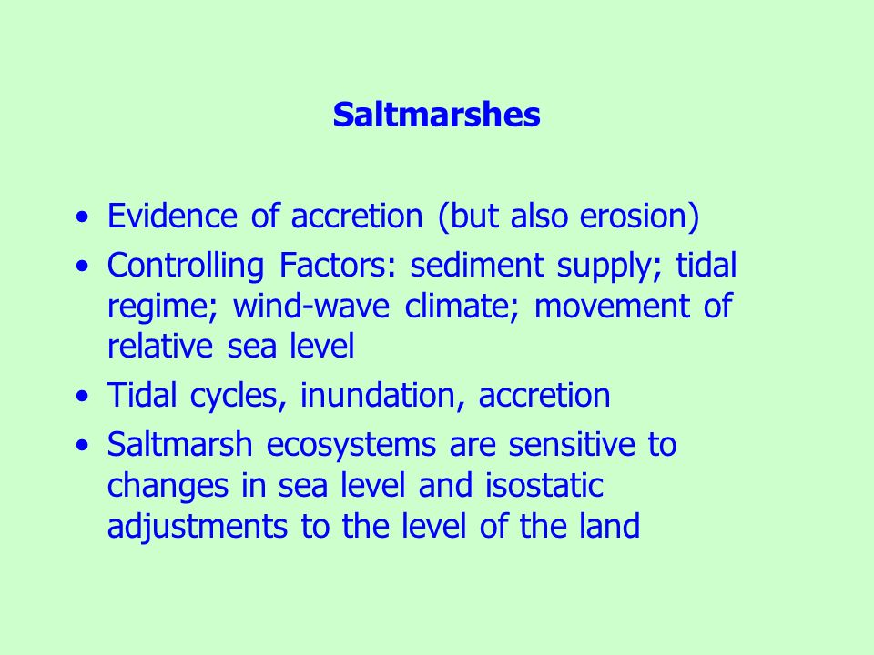 Saltmarshes Evidence of accretion (but also erosion)
