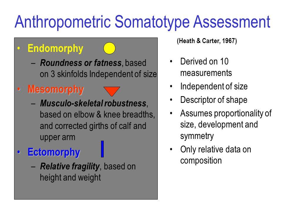 Anthropometric Somatotype Assessment