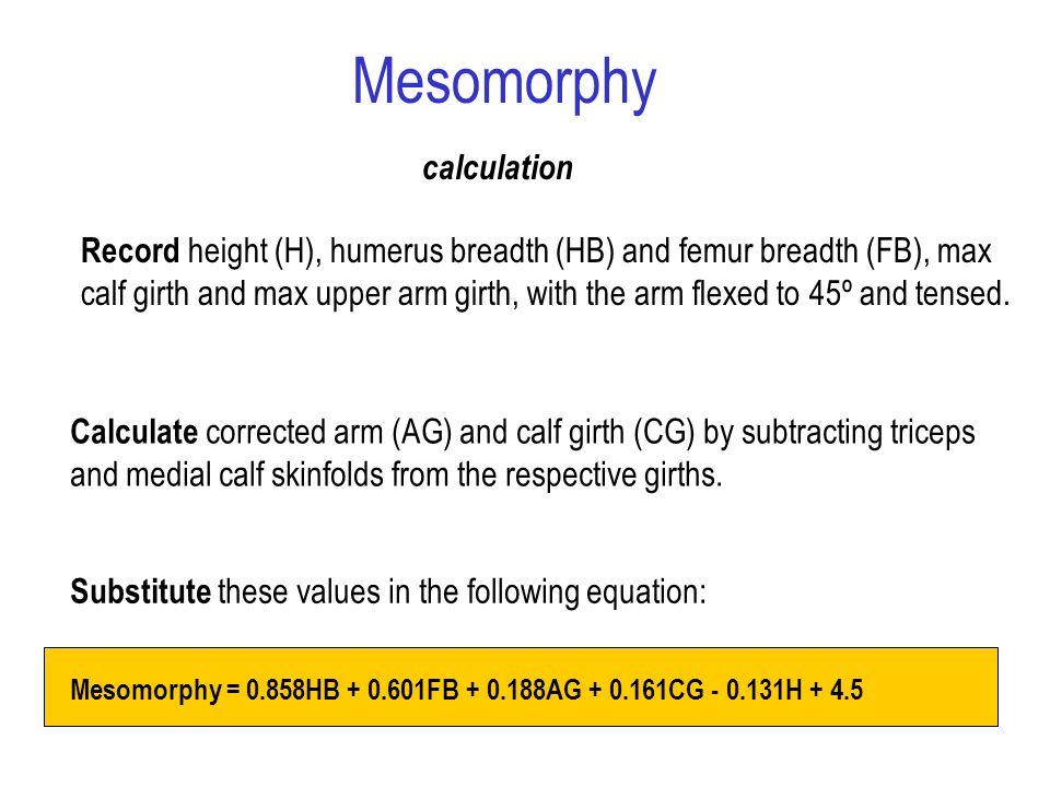 Mesomorphy calculation
