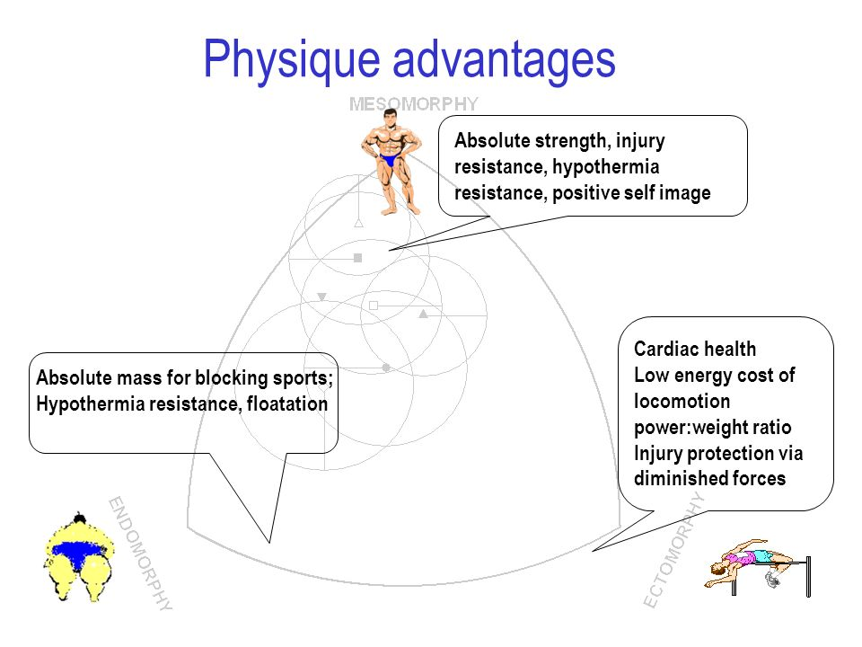 Physique advantages Absolute strength, injury resistance, hypothermia resistance, positive self image.