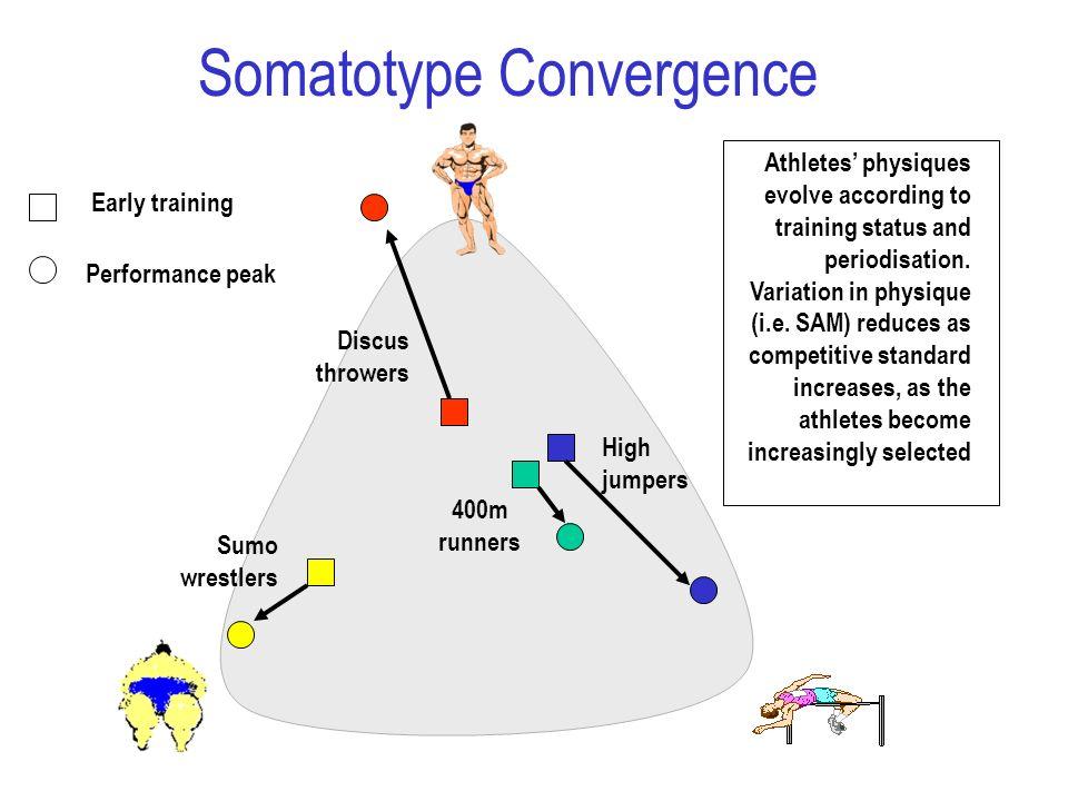 Somatotype Convergence