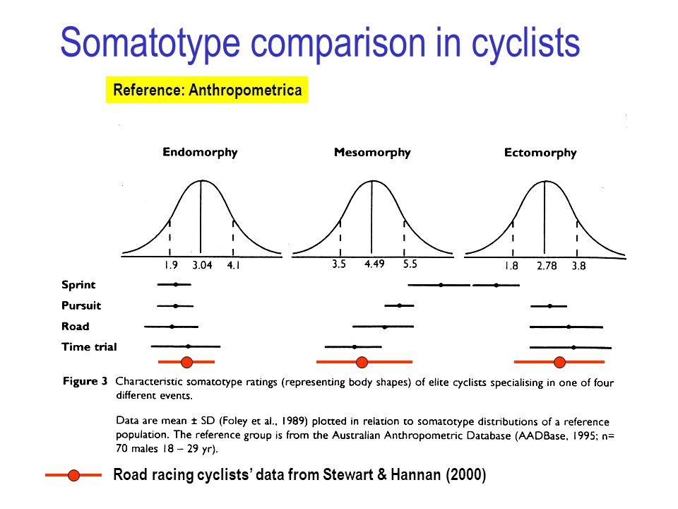 Somatotype comparison in cyclists