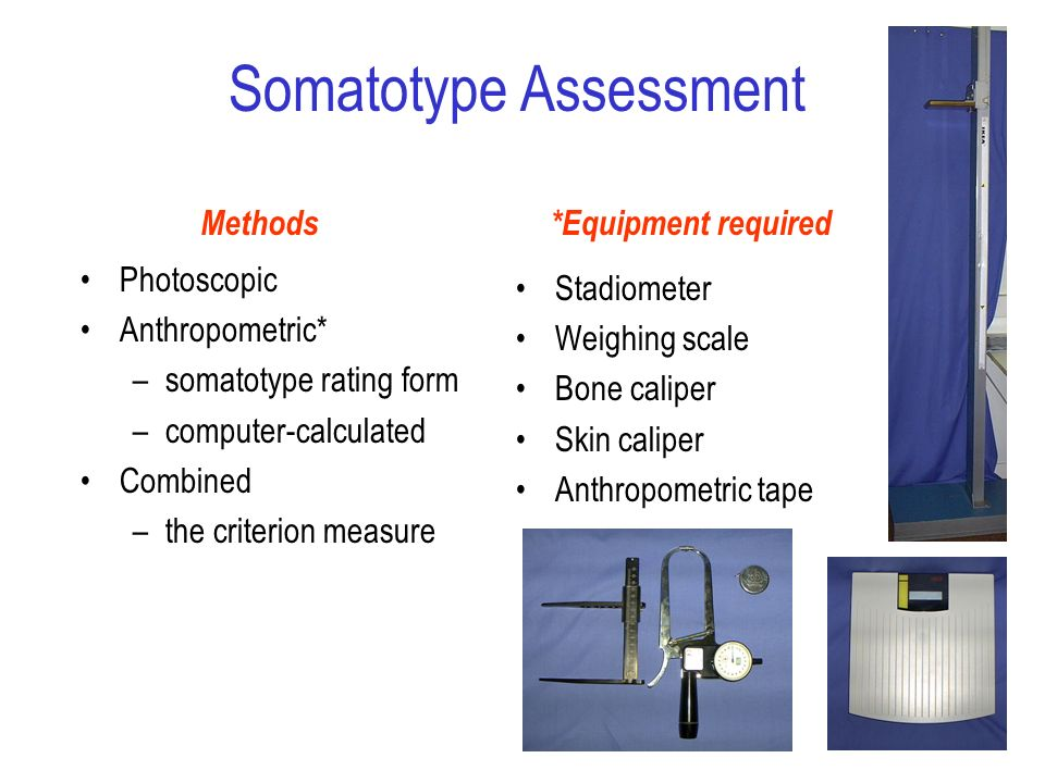 Somatotype Assessment