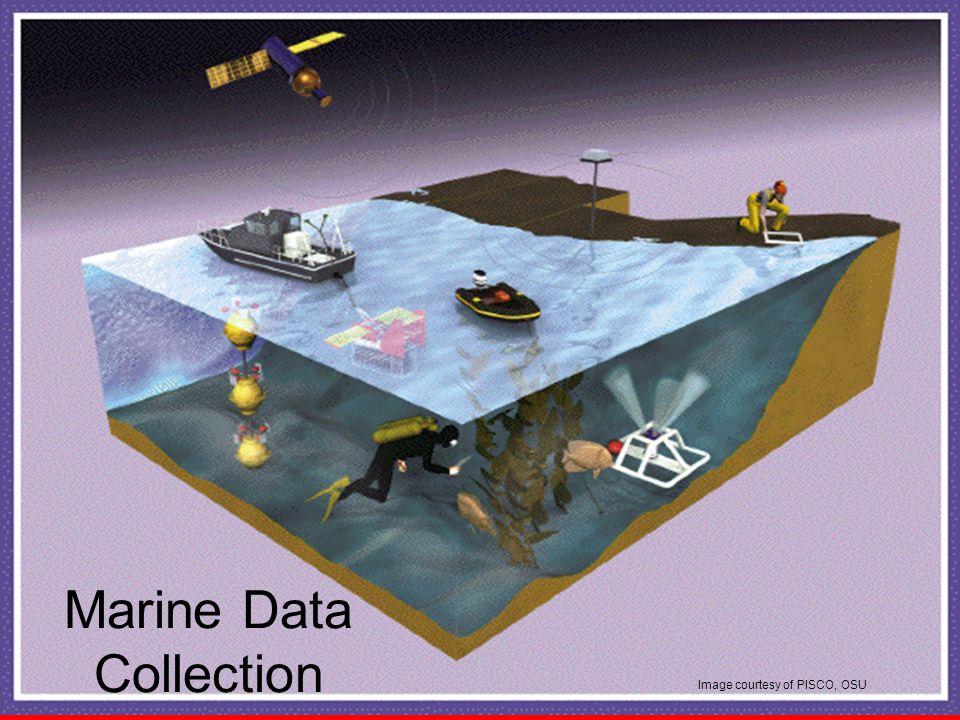 Marine Data Collection