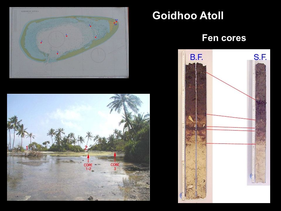 Goidhoo Atoll Fen cores