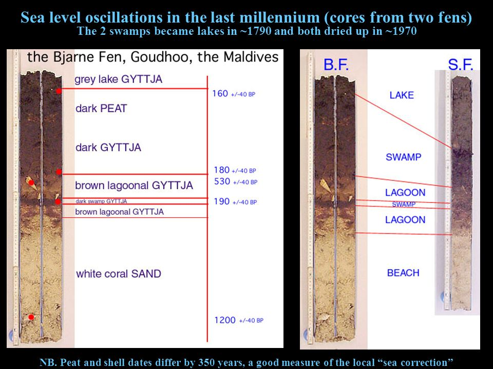 Sea level oscillations in the last millennium (cores from two fens)