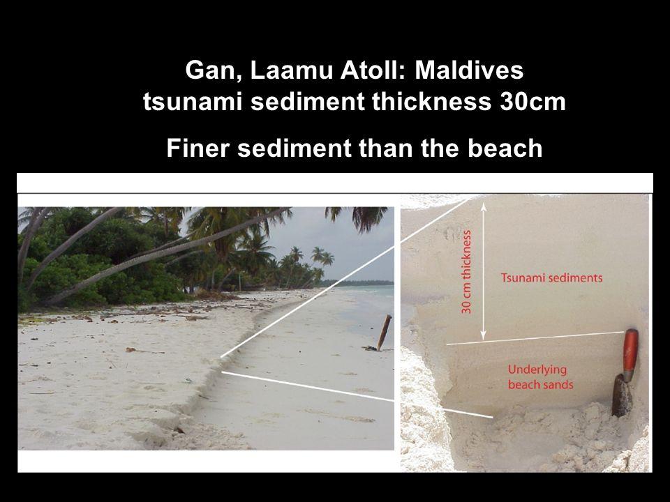 Gan, Laamu Atoll: Maldives tsunami sediment thickness 30cm