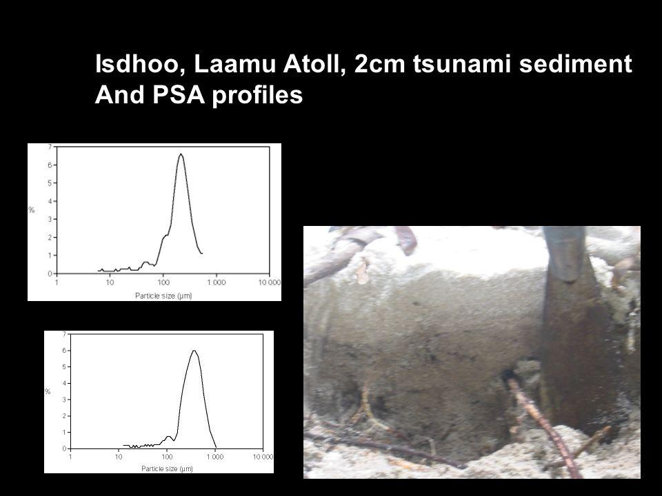 Isdhoo, Laamu Atoll, 2cm tsunami sediment