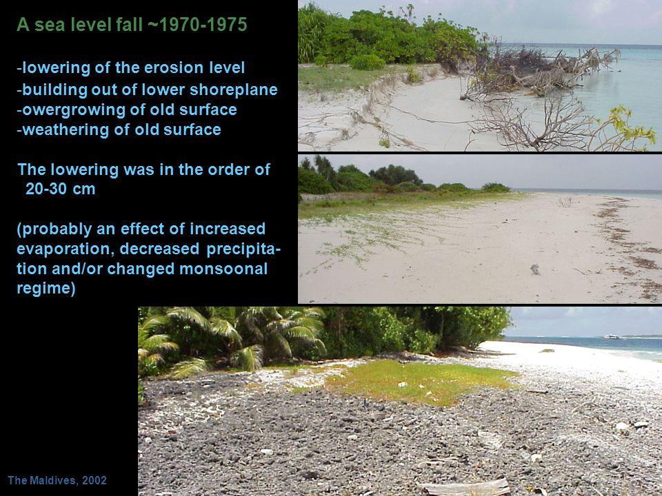 A sea level fall ~1970-1975 lowering of the erosion level