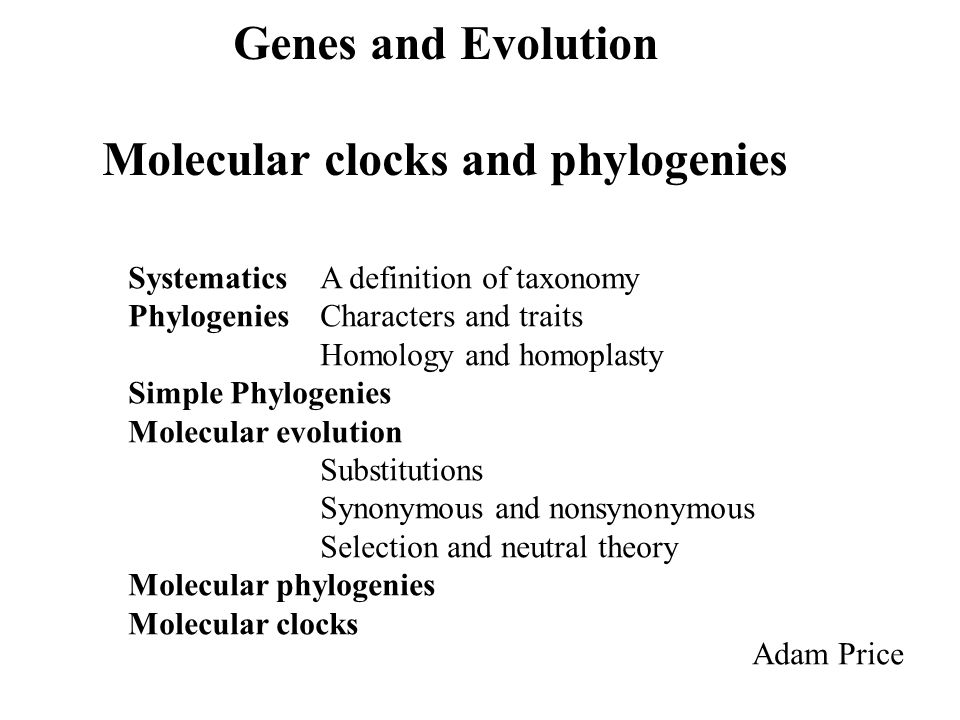 Molecular clocks and phylogenies
