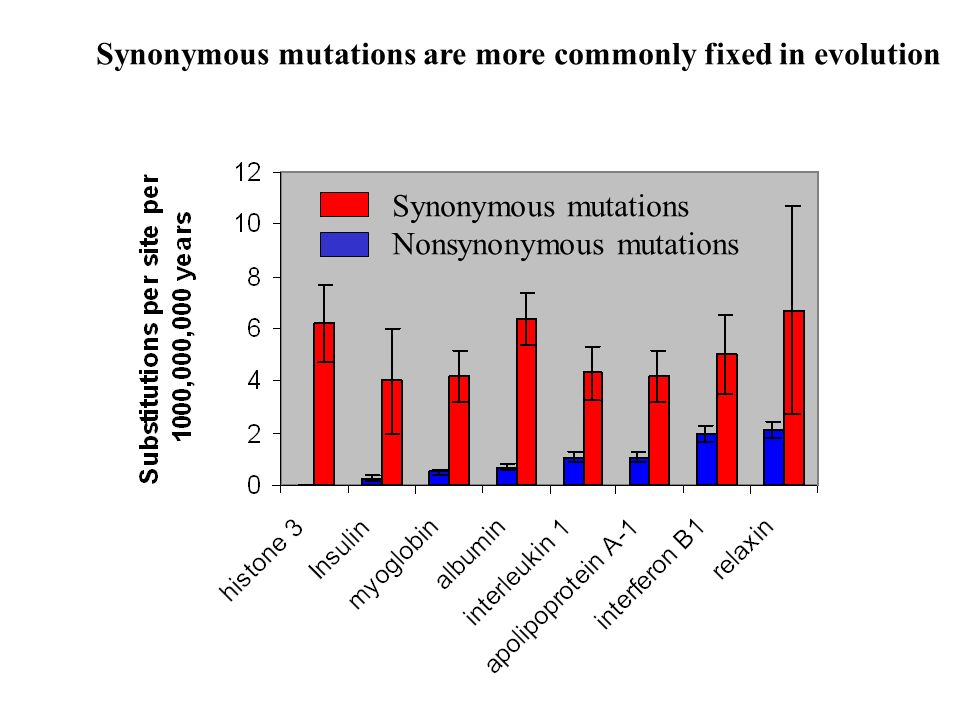 Synonymous mutations are more commonly fixed in evolution