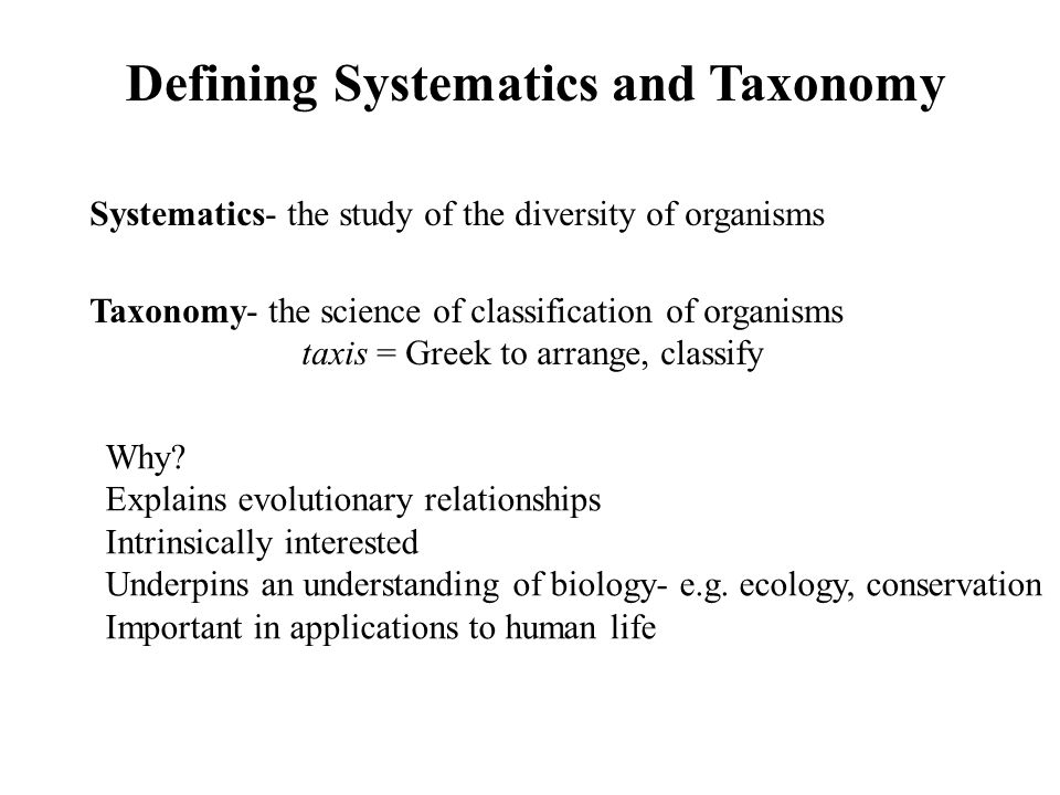 Defining Systematics and Taxonomy