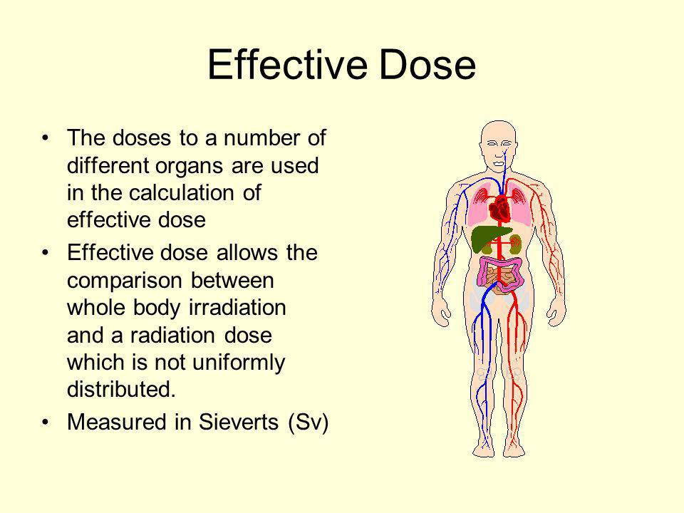 Effective Dose The doses to a number of different organs are used in the calculation of effective dose.