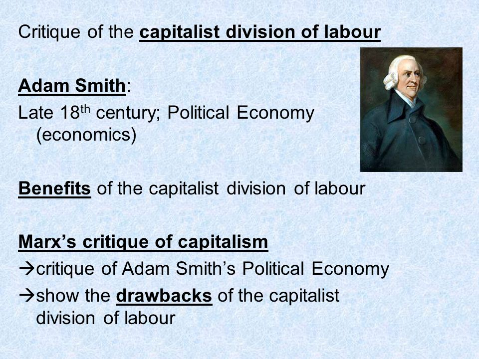 Critique of the capitalist division of labour