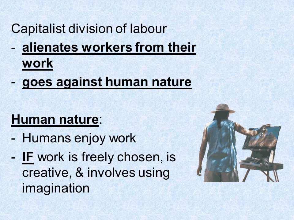 Capitalist division of labour