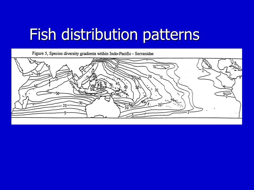 Fish distribution patterns