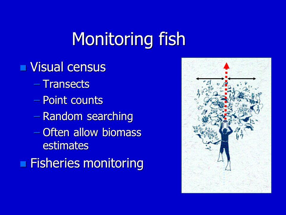Monitoring fish Visual census Fisheries monitoring Transects