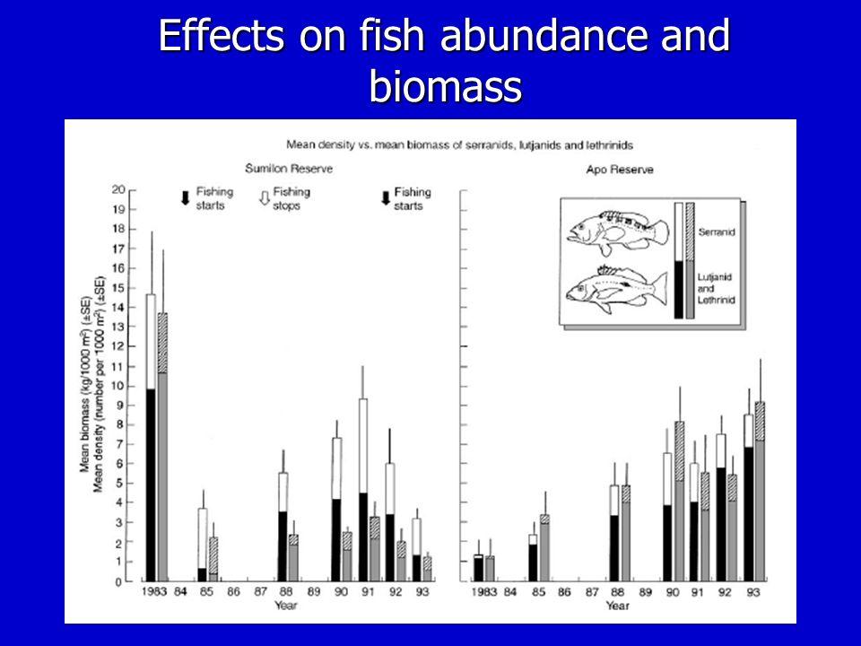 Effects on fish abundance and biomass
