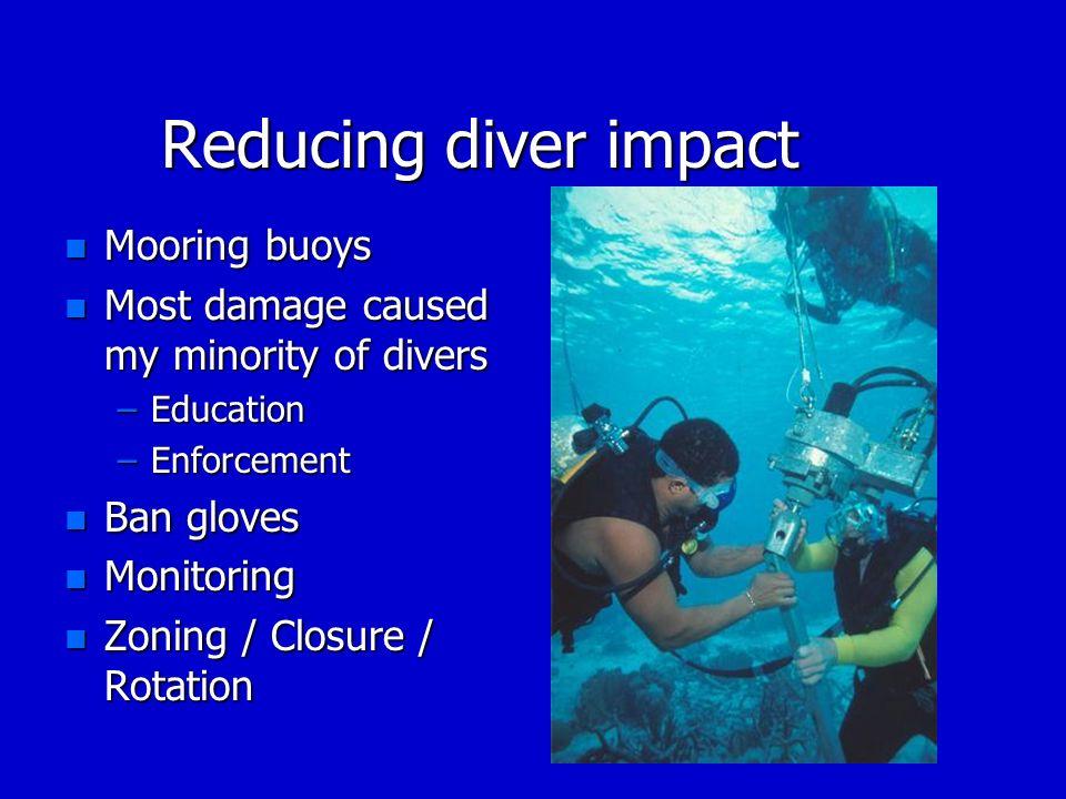 Reducing diver impact Mooring buoys