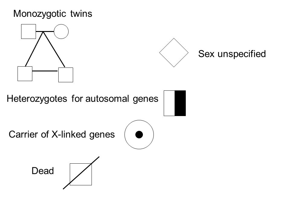 Monozygotic twins Sex unspecified Heterozygotes for autosomal genes Carrier of X-linked genes Dead