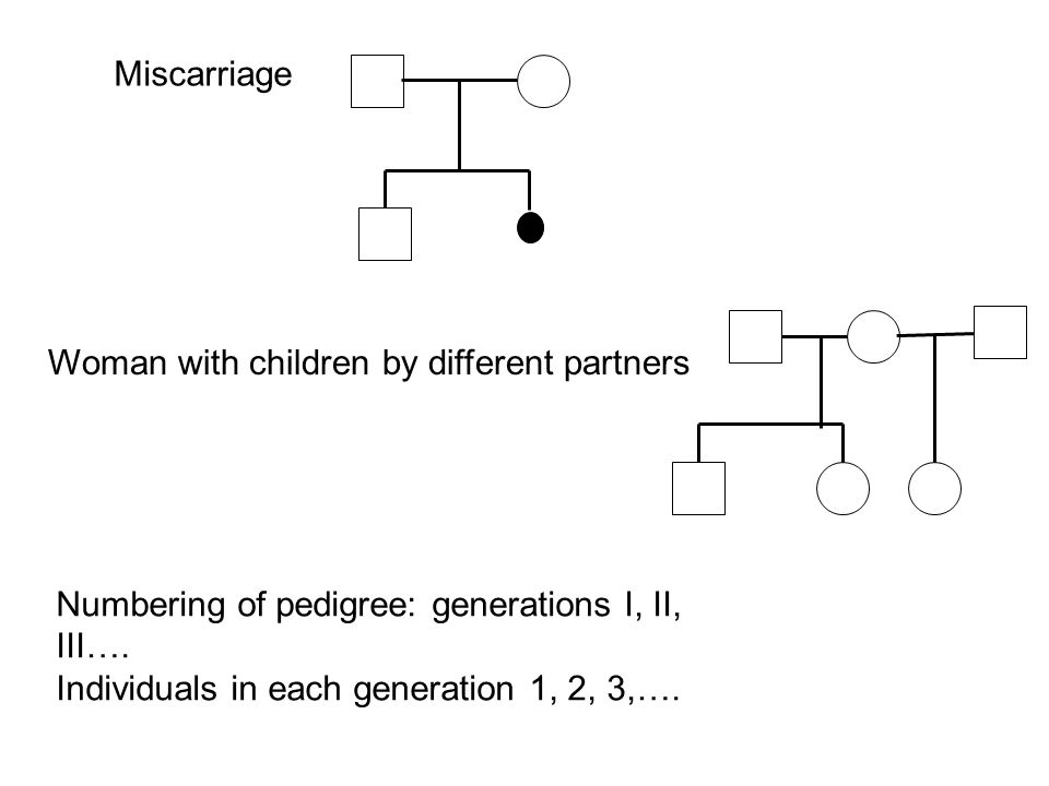 Miscarriage Woman with children by different partners. Numbering of pedigree: generations I, II, III….
