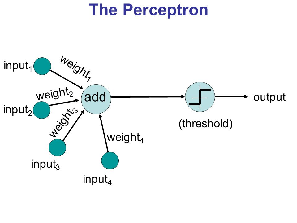 The Perceptron add weight1 input1 weight2 output input2 weight3