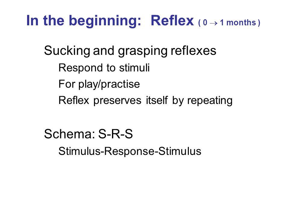 In the beginning: Reflex ( 0  1 months )