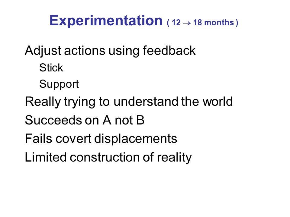 Experimentation ( 12  18 months )