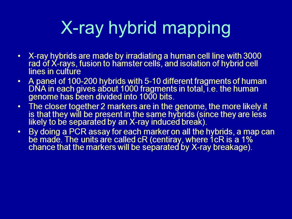 X-ray hybrid mapping
