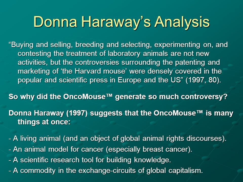 Donna Haraway's Analysis