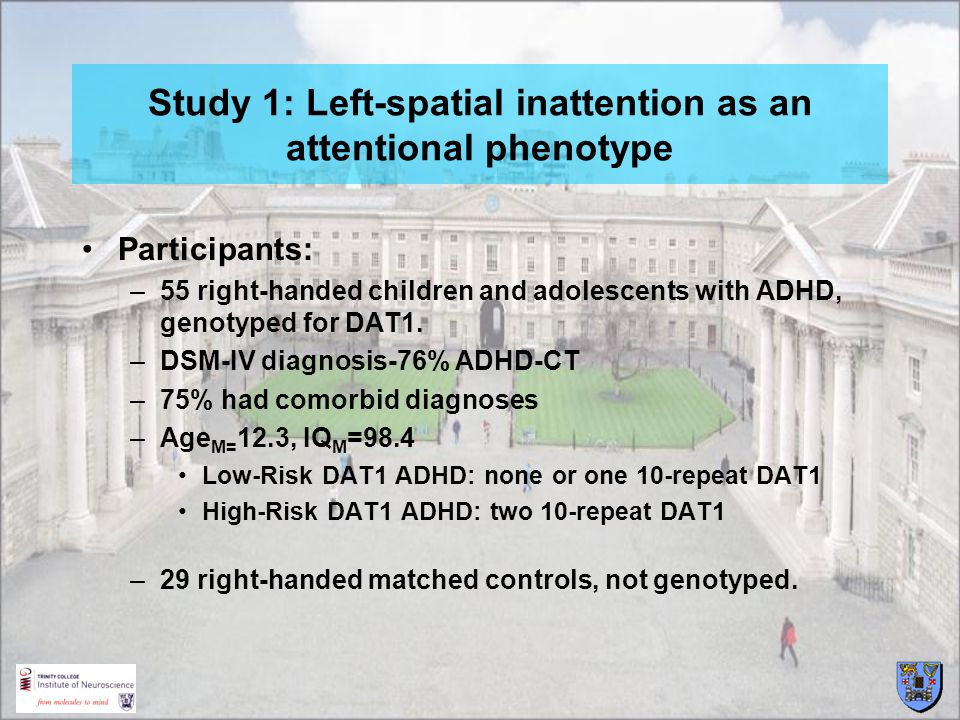 Study 1: Left-spatial inattention as an attentional phenotype