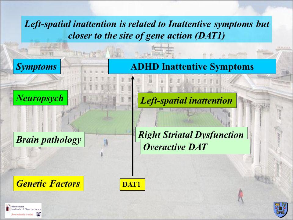 ADHD Inattentive Symptoms