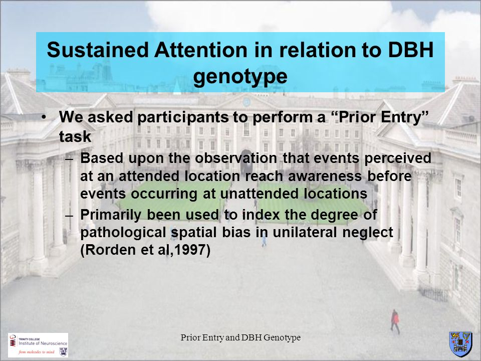 Sustained Attention in relation to DBH genotype