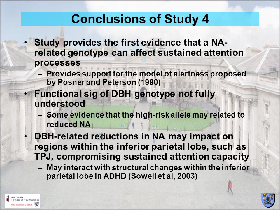 Conclusions of Study 4 Study provides the first evidence that a NA-related genotype can affect sustained attention processes.