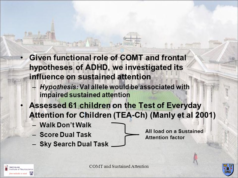 COMT and Sustained Attention